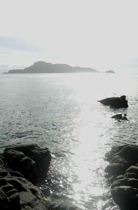 西陽があふれた海