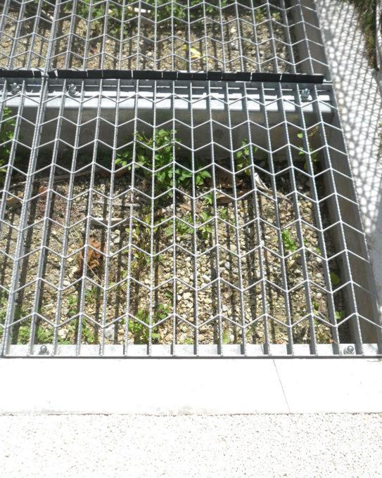 鹿の侵入を防ぐための公園の網歩道