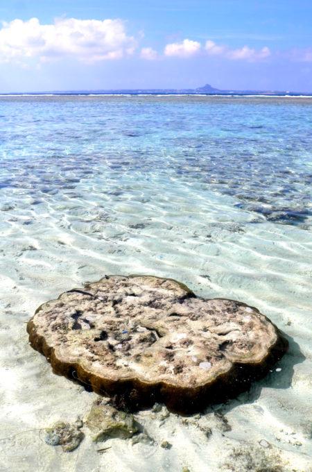 透明度抜群の瀬底ビーチ