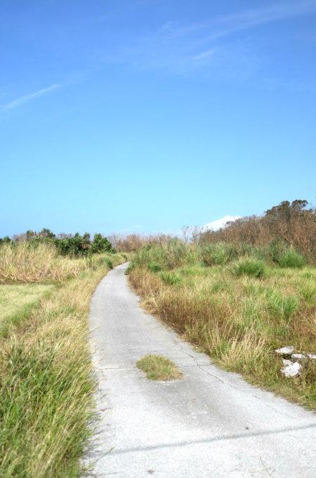 瀬底島ののどかな風景
