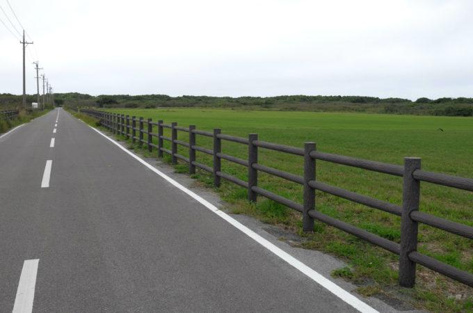 牧場が延々と続く黒島の風景