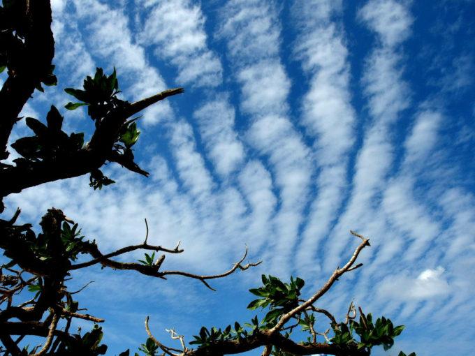 竹富島 綺麗なウロコ雲の空