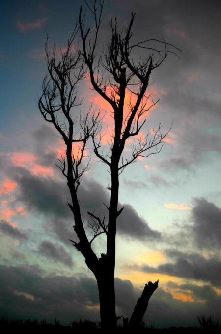不穏な雲と夕焼け