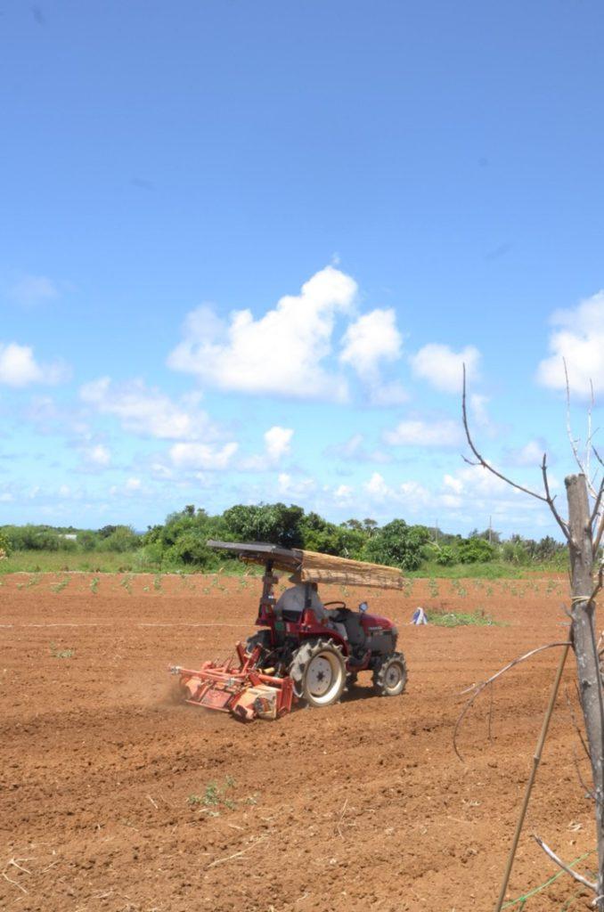西表島の畑を耕運機で耕す人