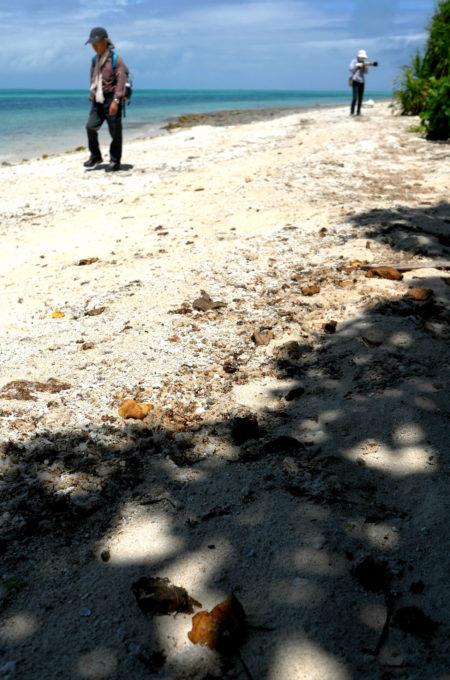 サンダルでは歩きにくいビーチもある