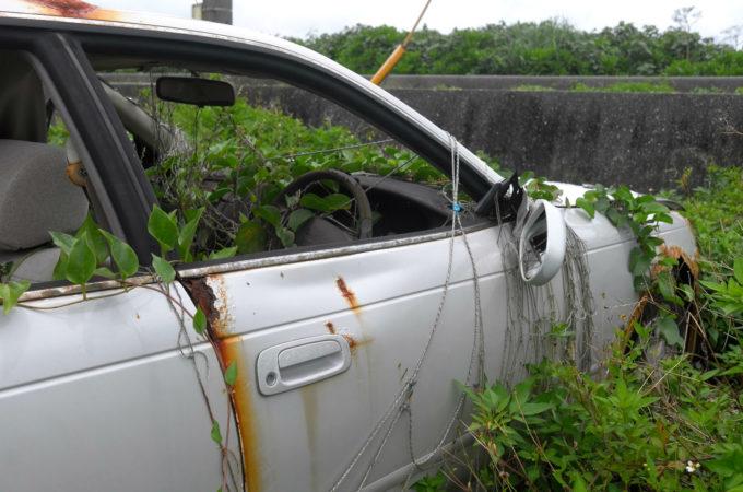 植物に侵食された放置自動車