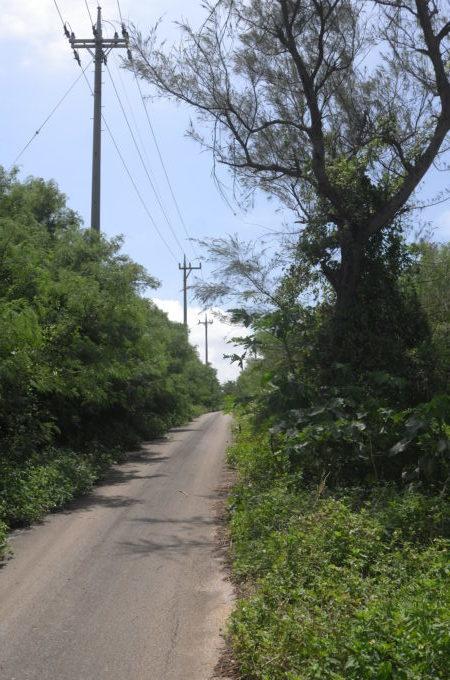 伊良部島の道