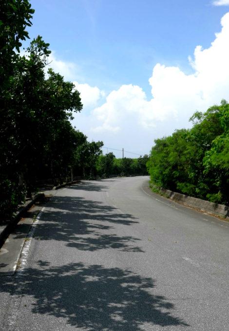 島の周回道路