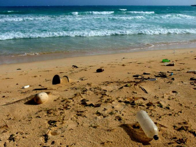 ビーチのゴミ
