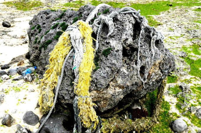 岩に絡まっている網