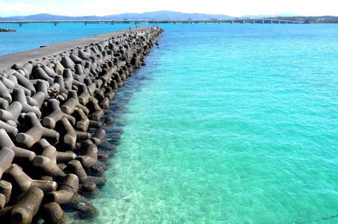 堤防付近の海はブルーというよりはグリーン