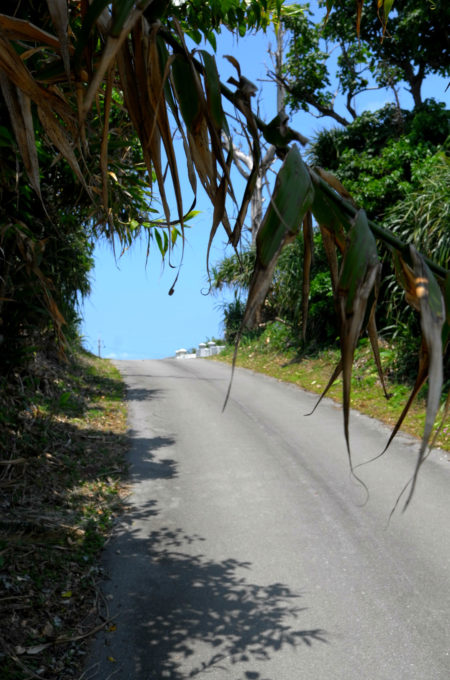 小浜島の坂道