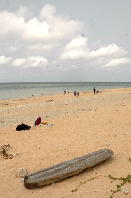 手前に流木があるビーチ風景