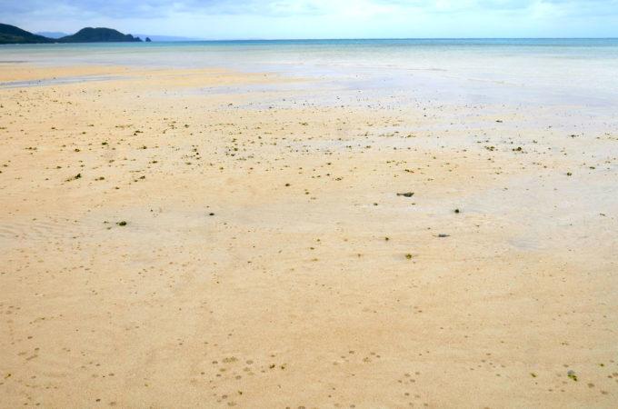 底地ビーチの干潟