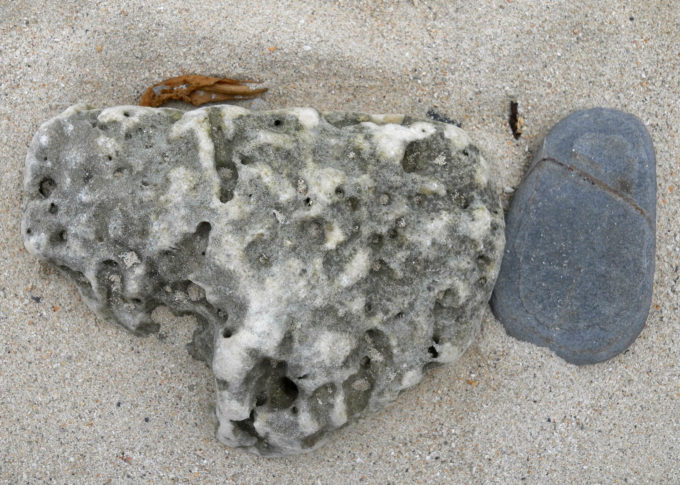 物語を感じさせるようなサンゴと石の配置
