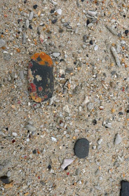 ちょっと昆虫のようにも見える石