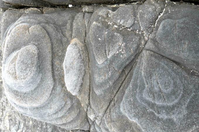 等高線状の筋が付いている岩
