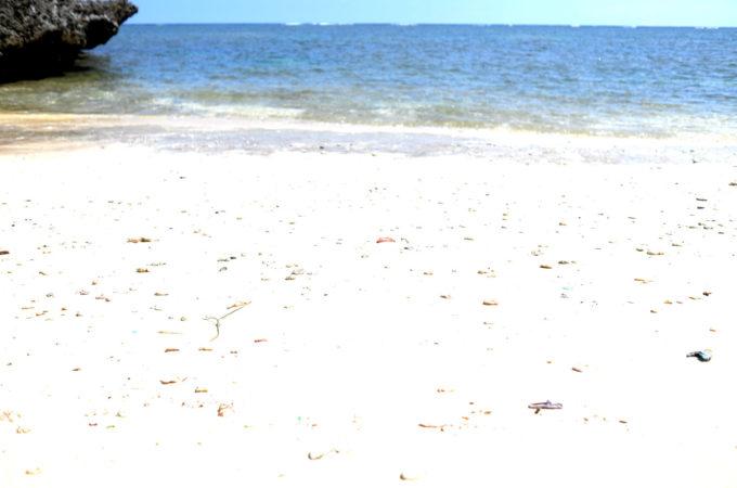 ビーチの様子