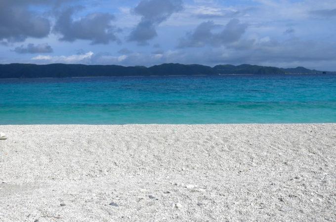 海がバックの白化サンゴの丘
