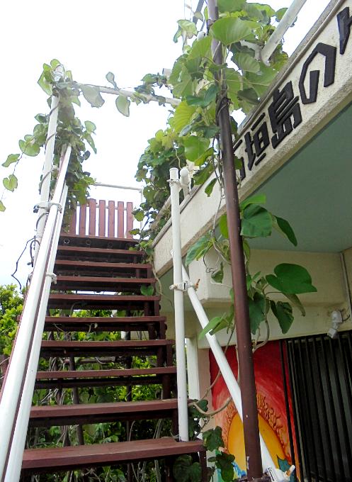 2階から屋上への階段