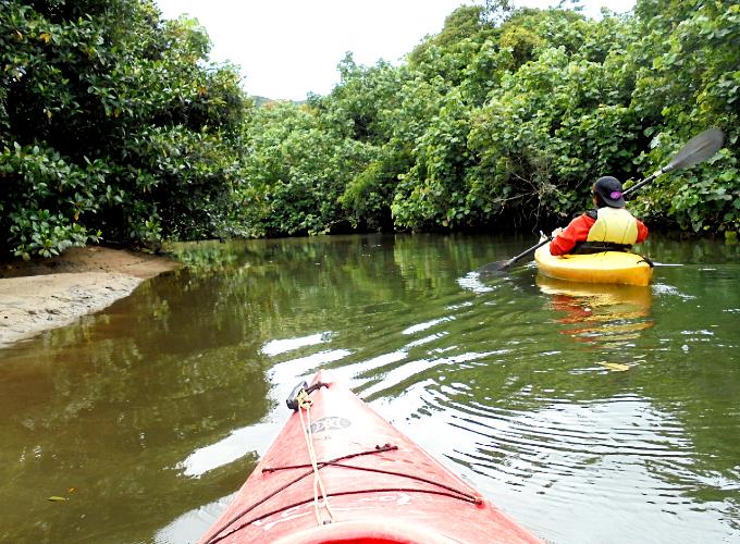 カヤックで川を進む