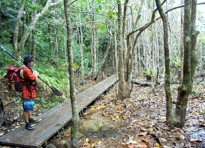森の中をカヤック置き場まで歩く