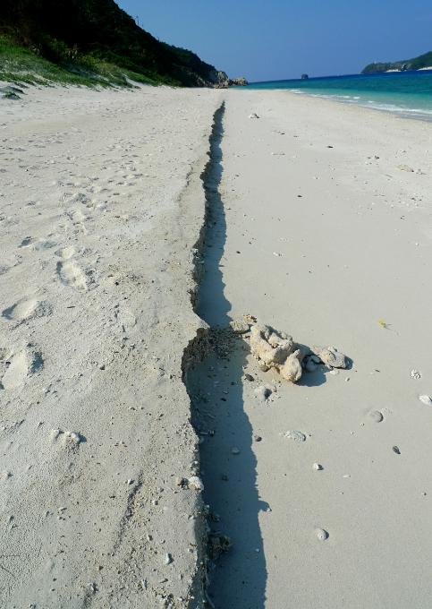 砂浜にあらわれた断層