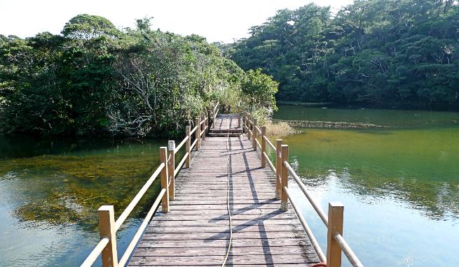 辺土名湖畔の橋
