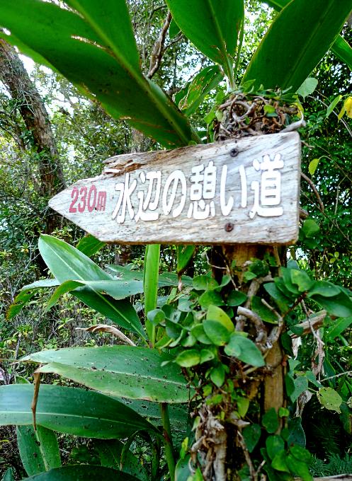 「水辺の憩いの道」の道標