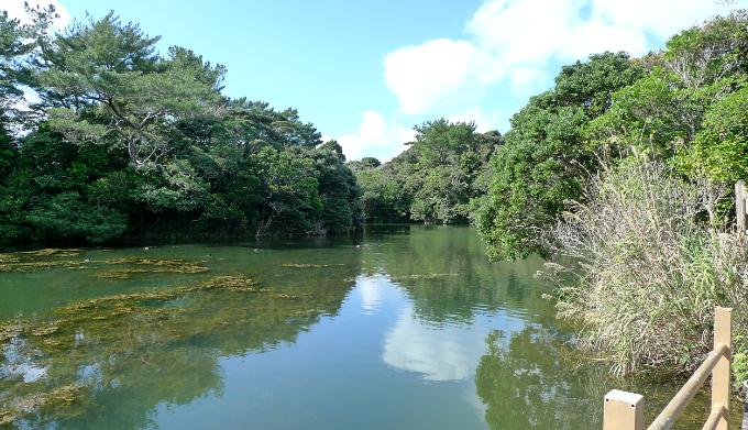 辺土名湖畔
