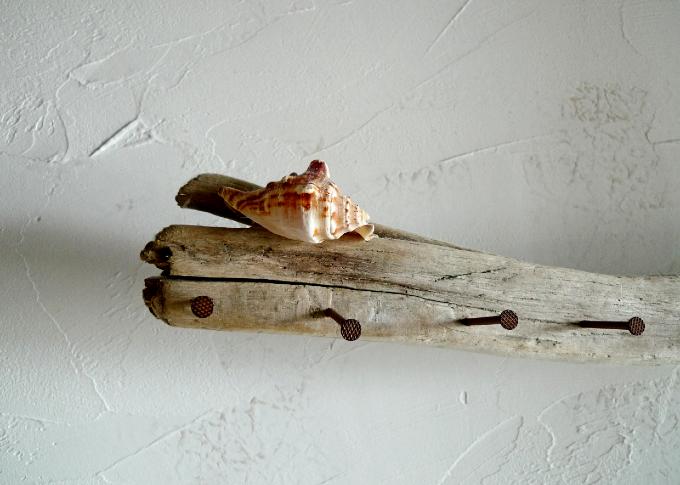 貝の飾りが付いたハンガー